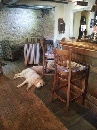 The Crown Inn Elton: 2 dogs inside of the restaurant