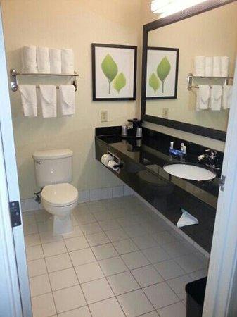 SpringHill Suites Memphis East/Galleria: 03