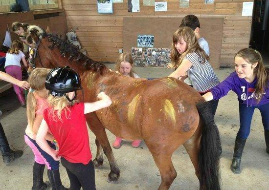 Tralee Equestrian Centre