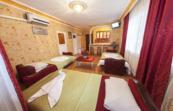 Nehir Apart Hotel: Nehir Apart Otel, Salon