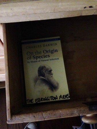 The Ebrington Arms: A truly inspiring read