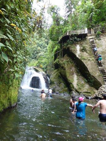 Cabañas Bird Planet : Waterfalls nearby