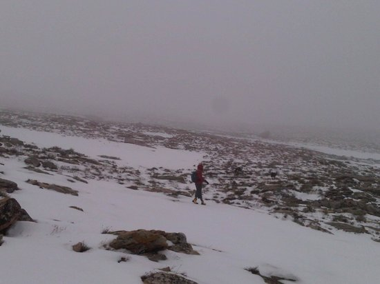 Hike Cape Town in the snow