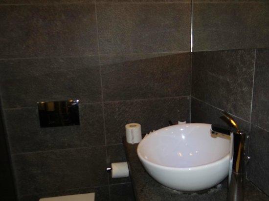 Regina Maria Spa Design Hotel: Sink/toilet