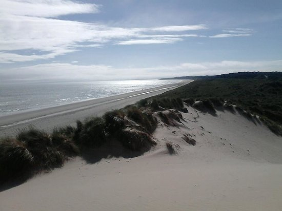 Curracloe Holiday Villas: Beach down the road, view from the dune