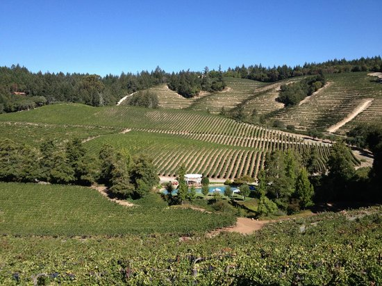 Intimate Wine Tours: Diamond Creek ... Bordeaux in Napa Valley !!
