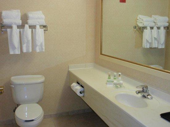 Country Inn & Suites by Radisson, Newark Airport, NJ: バスルーム