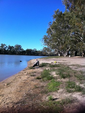 Loxton Riverfront Holiday Park: Non-powered camp sites along here