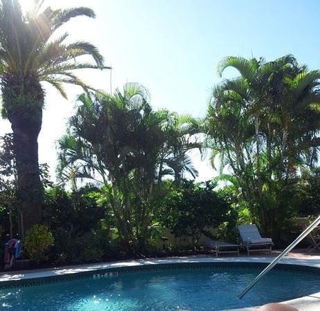 Sunrise Garden Resort : pool area