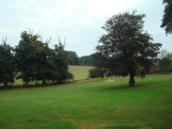 The Salhouse Lodge: The grounds
