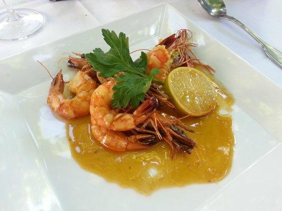 Giardino: shrimps on orange/lemon