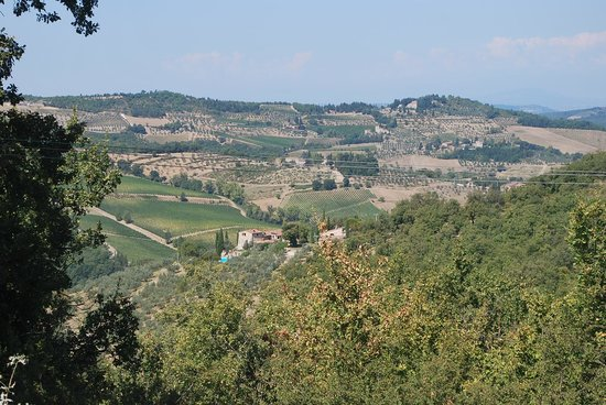 Querceto di Castellina : View from the property
