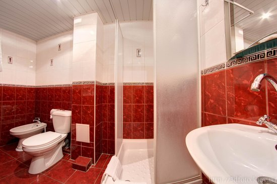 Holosiivskyi Hotel: Standart (Twin)