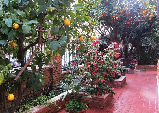 B&B Al Nostro Villino: Il nostro giardino