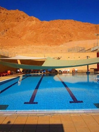 The Masada Hostel : Pool area