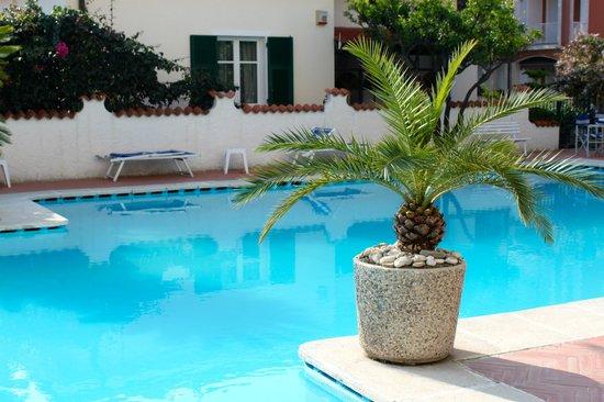 Hotel Splendid : Pool
