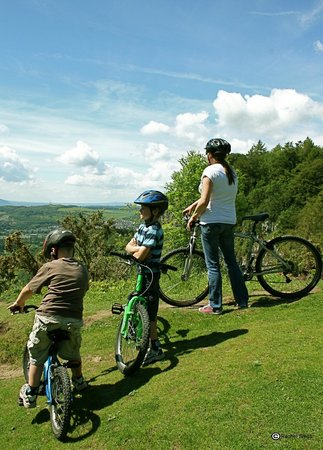 Kiltarlity Lodges: Why not try Mountain Biking - bring your own or hire locally