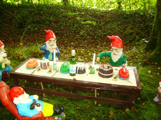 Wild Backyard Party : The Gnome Reserve & Wild Flower Garden tea party