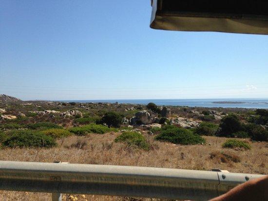 Parco Nazionale Asinara: asinara