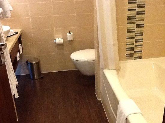 Hilton Garden Inn New Delhi / Saket : bathroom