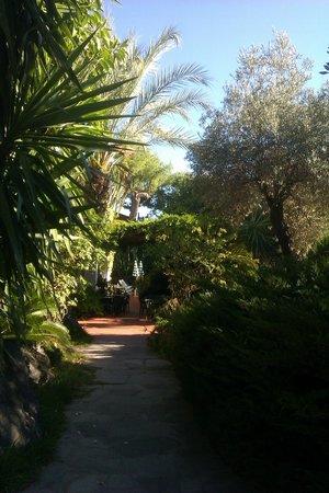 La Pineta: il giardino dell'Hotel