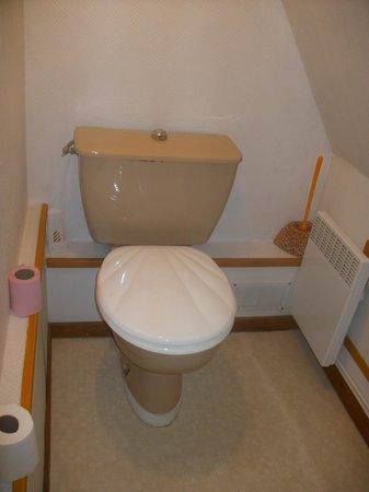 L'Huitriere: WC avec zoom on voit la saleté au niveau de la chasse d'eau et du scotch dans le bas du wc