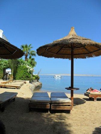 Premium Beach Resort: Strand & Meer