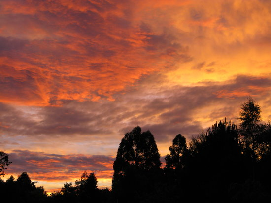Rive Gauche B&B Lodge: Rive Gauche B&B - sunset