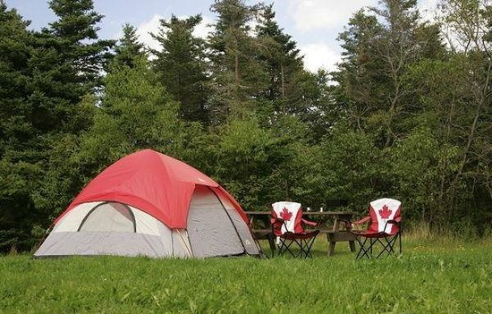 Tent Field - Picture of Pippy Park, St. John's