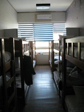 Terra Guesthouse: Men's Bunks - Tokyo Room