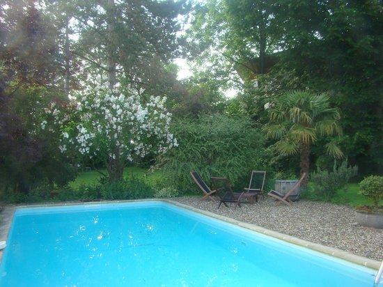 Fleurs de vignes : Jardim - piscina