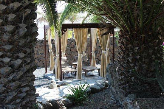 Hotel Villa Vik: Hotel grounds