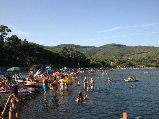 Camping Lacona : Spiaggia di Margidore