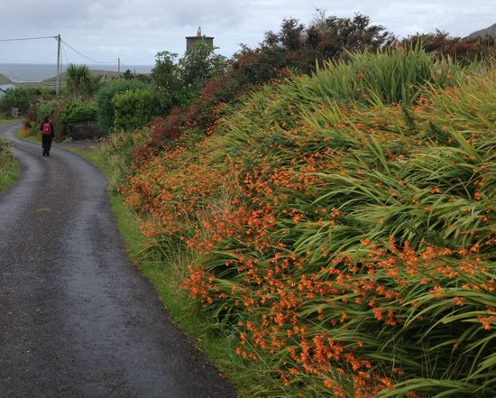 Ceann Sibeal Bed & Breakfast: On a hike close to the house