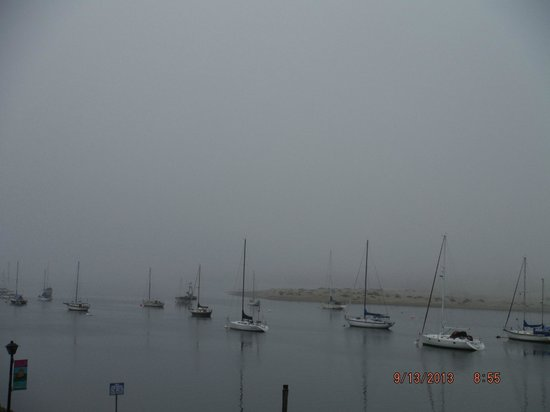456 Embarcadero Inn & Suites : harbor view