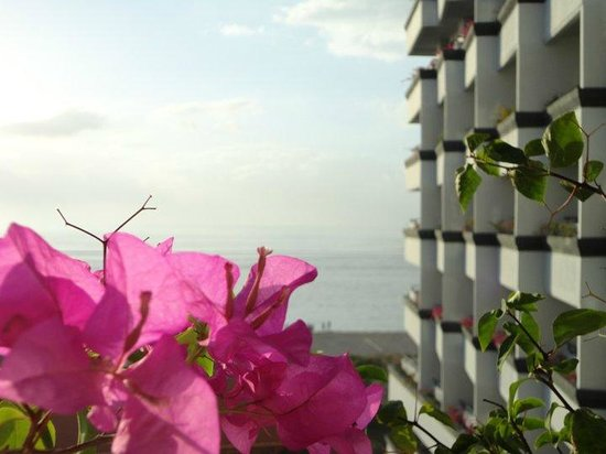 Inna Grand Bali Beach Hotel: Flowers on my terrace