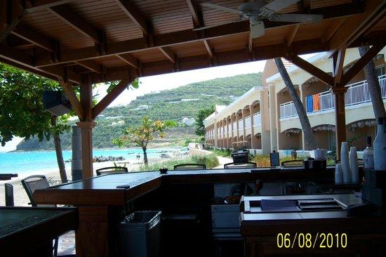 Divi Little Bay Beach Resort: The Bar where the parrot hangs out.
