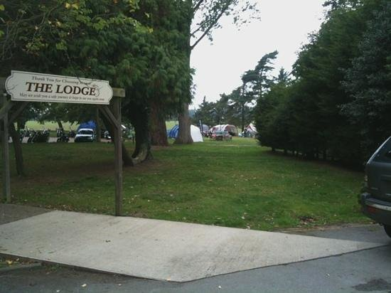 The Salhouse Lodge: Campsite view from the Lodge reception