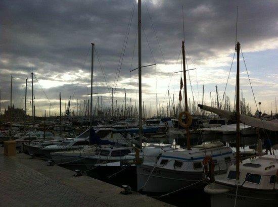 Palma Bellver By Melia : Puerto