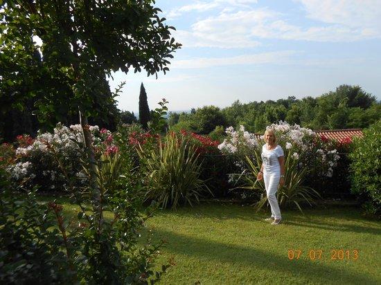 Villa Archi: Le jardin fleuri : un paradis