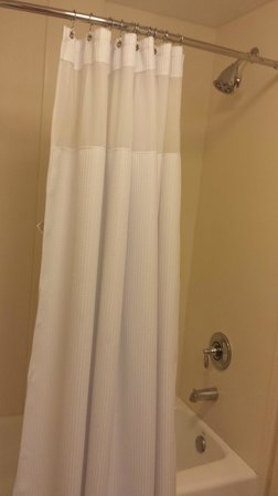 Fairfield Inn & Suites Orlando International Drive/Convention Center : Clean Showers