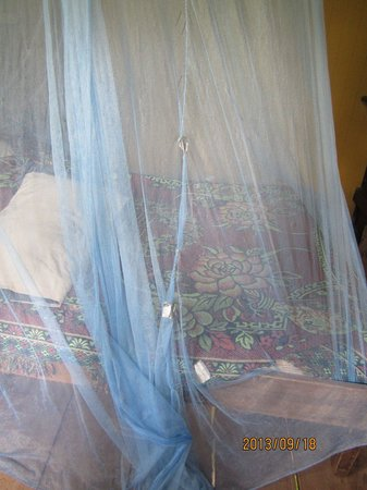 Walaba Hostel & Beach Houses : Unacceptable mosquito netting I had to duct-tape