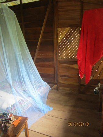 Walaba Hostel & Beach Houses : Musty, dusty, mouldy room
