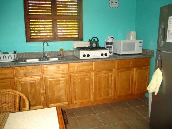 Buffam's Tropical Haven: Studio Kitchen