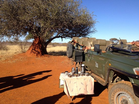 Tau Game Lodge: safari breakfast