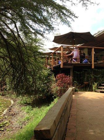 Wildebeest Eco Camp : terrasse restaurant