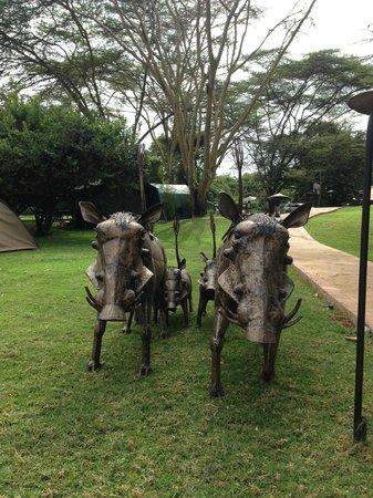 Wildebeest Eco Camp: jardin objets artistiques