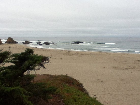 Ocean View Lodge: Beautiful Coast