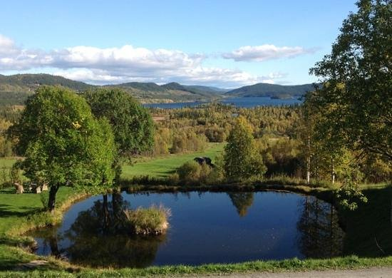 Gronolen Fjellgard: Utsikten fra Grønolens spisesal og entre.