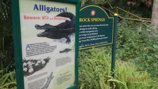 Apopka, Floride : Alligator Warning